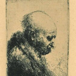 Rembrandt, etching, Bartsch b. 294, Bald-headed man in right profile: small plate [The artist's father?]