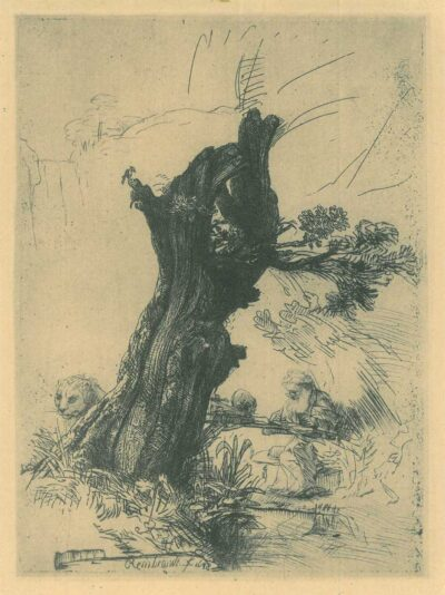 Rembrandt, etching, Bartsch B. 103, St. Jerome beside a pollard willow
