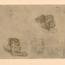 Rembrandt, zeichnung, hofstede de groot 228, Der Kämmerer aus dem Morgenland