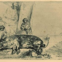 Rembrandt Etching, Bartch B.157, The hog