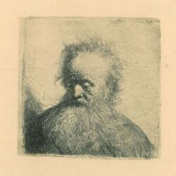 Rembrandt, Etching, Bartsch B. 315, Old man with a flowing beard: bust